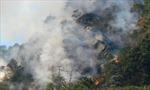 Khống chế đám cháy tại rừng đặc dụng Đèo Cả