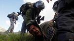 Israel bắt giữ hàng chục nghị sĩ của Hamas