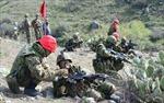 Nhật Bản cân nhắc hợp pháp hóa việc cử binh sĩ ra nước ngoài