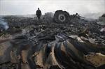 Chuyên gia Đức chỉ thủ phạm bắn MH17