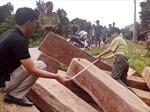 Thu giữ gần 5,5m3 gỗ lậu