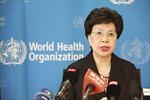 Mỹ Latinh tăng cường phòng chống Ebola