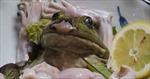 Rợn người món sashimi 'ếch còn giãy' ở Nhật