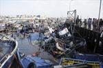 Động đất 6,4 độ richter ở miền trung Chile
