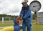 EU đối phó nguy cơ Nga ngừng cung cấp khí đốt