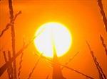 Phát hiện phân tử giúp đo hoạt động ở lõi Mặt Trời