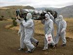 CHDC Congo xác nhận 31 người tử vong vì Ebola