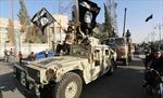 Qatar thuyết phục IS trả tự do cho con tin Liban