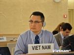Việt Nam đề cao quan điểm đúng đắn, khách quan về lịch sử thông qua giáo dục