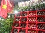 Nhộn nhịp 'Tuần lễ Hàng Việt Nam tại Pháp'