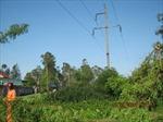 Cắt điện khẩn cấp trên diện rộng tại Điện Biên