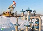 Các nhân tố đảm bảo ổn định kinh tế Nga vẫn vững mạnh