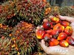 Indonesia giảm mục tiêu xuất khẩu
