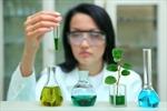 Việt Nam tìm hiểu kinh nghiệm khoa học của Israel