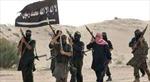 Ai Cập tử hình 7 phần tử thánh chiến tại Sinai