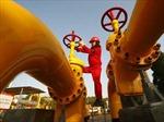 Nga, Ukraine nhất trí 'cơ bản' về thỏa thuận khí đốt
