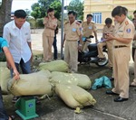 Lào Cai: Mật phục bắt giữ lượng hàng lậu lớn