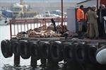 Chìm tàu nhập cư tại Thổ Nhĩ Kỳ, ít nhất 24 người chết