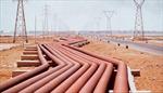 Nhật Bản đề nghị Nga xây dựng đường ống khí đốt đến Tokyo