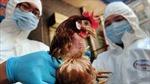 Chủng virus cúm gia cầm phát hiện tại Anh là H5N8