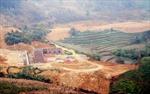 Vô tư cấp sổ đỏ đối với đất dự án đã thu hồi