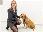 Chú chó có biệt tài ngửi mùi… ung thư