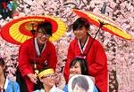 Lễ hội Fukushima 2014