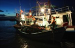 Ngư dân Quảng Ngãi gặp nguy mùa biển động
