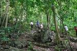 Chi trả dịch vụ môi trường rừng - Xã hội hóa bảo vệ và phát triển rừng