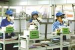 Kiên quyết xử lý lao động bỏ trốn tại Hàn Quốc
