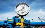Phần Lan-Nga tăng cường hợp tác năng lượng