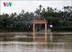 Thừa Thiên-Huế mưa to, học sinh phải nghỉ học
