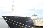 Tin tiếp vụ tàu hàng Việt Nam bị cướp biển tấn công