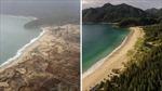 Nhìn lại 10 năm thảm họa sóng thần Ấn Độ Dương