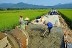 Xã đạo Việt Tiến xây dựng nông thôn mới