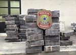 Brazil tịch thu 8 tấn cần sa được tuồn vào từ Paraguay
