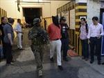 Argentina bắt 230 kg cocaine cùng hơn 1,5 triệu USD tiền giả