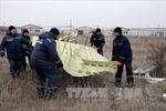 Lãnh đạo Donetsk: 'Tôi tận mắt thấy Su-25 bắn hạ MH-17'