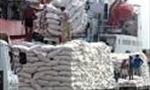 """Xuất khẩu gạo của Campuchia tăng """"khiêm tốn"""""""