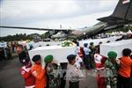 Đình chỉ giấy phép bay của AirAsia tuyến Surabaya - Singapore