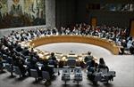 Palestine nỗ lực lobby nghị quyết chấm dứt sự chiếm đóng của Israel