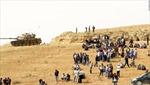 Thắng thế IS, chiến binh Kurd kiểm soát 80% Kobane