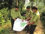 Hòa Bình tập trung phòng, chống cháy rừng