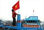 Hạ thủy tàu cá thay thế tàu bị Trung Quốc đâm chìm