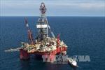 Giá dầu thô trung bình năm nay là 54 USD/thùng