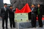 Khối than nguyên khối lớn nhất Việt Nam