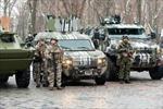 EU kêu gọi thực thi giải pháp cho xung đột ở Ukraine