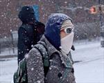 Hình ảnh bão tuyết lịch sử tràn vào nước Mỹ
