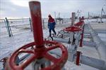 Giá dầu mỏ bất ngờ tăng mạnh