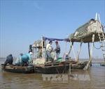 Tìm kiếm nạn nhân bị lật thuyền chở ngao ở Thái Bình